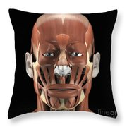 Muscles Of The Face Throw Pillow