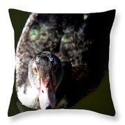 Muscovy 14-2 Throw Pillow