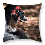 Muscovy Feathers Throw Pillow