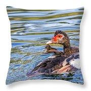 Muscovy Hen Throw Pillow