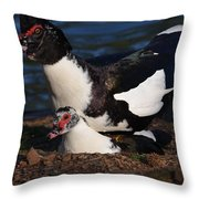 Muscovy Lovers Throw Pillow