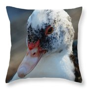 Muscovy Portrait 2013 Throw Pillow