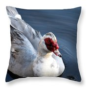 Muscovy Study 2013 Throw Pillow