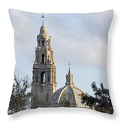Museum Of Man Throw Pillow