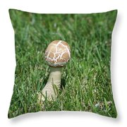 Mushroom 01 Throw Pillow