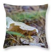 Mushroom 1 Throw Pillow