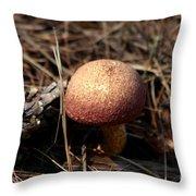 Mushroom And Pine Cone Neighbors Throw Pillow