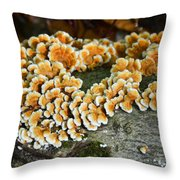Mushroom Clusters Throw Pillow