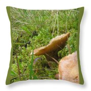 Mushroom In Grass Throw Pillow