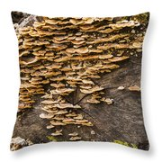 Mushroom Log Throw Pillow