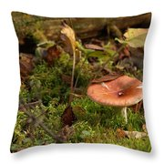Mushroom N Moss Throw Pillow
