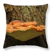 Mushroom Plate Throw Pillow