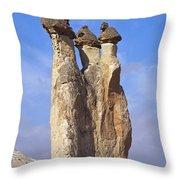 Mushroom Stems Throw Pillow