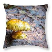Mushroom Time Throw Pillow