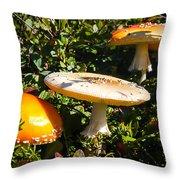 Mushroom Tops Throw Pillow