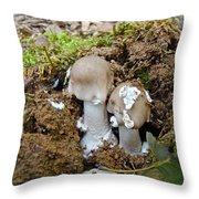 Mushroom Twins - As Youngsters Throw Pillow