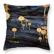 Mushrooms Amazon Jungle Brazil 4 Throw Pillow