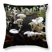 Mushrooms Amazon Jungle Brazil 5 Throw Pillow
