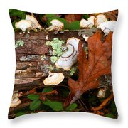 Mushrooms And Leaf Throw Pillow
