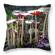 Mushrooms In Sunlight Throw Pillow