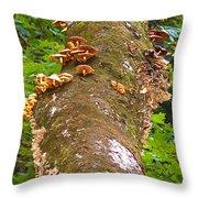 Mushroom's Kingdom Throw Pillow