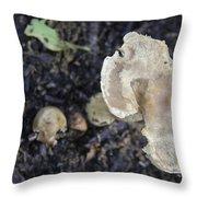 Mushy Mushrooms Throw Pillow