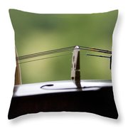 Music Of The Mountain Throw Pillow