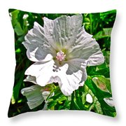 Musk Mallow Along Trail To Cap Gaspe In Forillon National Park-quebec  Throw Pillow