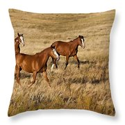Musketeers Throw Pillow