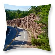 Muskoka Drive Through Throw Pillow