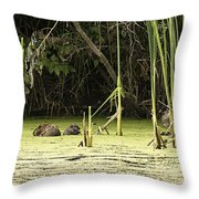 Muskrat Family Throw Pillow