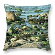 Mussels And Moss Throw Pillow