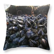 Mussels On A Rock Throw Pillow