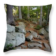 Must Go Up Throw Pillow