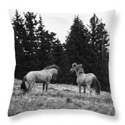 Mustang Challenge 6 Bw Throw Pillow by Roger Snyder