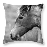 Mustang Close 1 Bw Throw Pillow by Roger Snyder