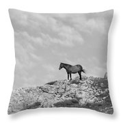 Mustang On Hill 1 Bw Throw Pillow