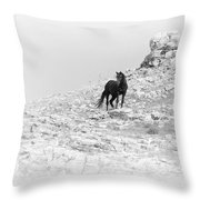 Mustang On Hill 2 Bw Throw Pillow by Roger Snyder