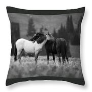Mustangs Grooming 1 Bw Throw Pillow