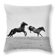Mustangs Sparring 1 Throw Pillow by Roger Snyder
