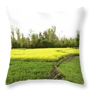 Mustard Fields In Kashmir On The Way To The Town Of Sonamarg Throw Pillow