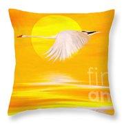 Mute Sunset Throw Pillow