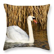Mute Swan By Reed Beds Throw Pillow