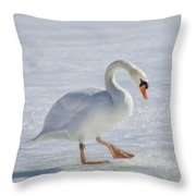 Mute Swan Oil Paint Throw Pillow