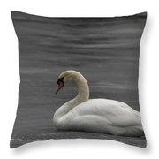Mute Swan On Ice Throw Pillow