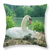 Mute Swan Parent And Chicks On Nest Throw Pillow by Konrad Wothe