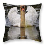 Mute Swan Pictures 141 Throw Pillow