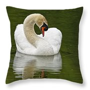 Mute Swan Pictures 191 Throw Pillow