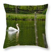 Mute Swan Pictures 195 Throw Pillow