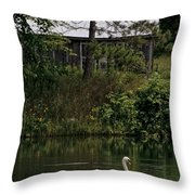 Mute Swan Pictures 199 Throw Pillow